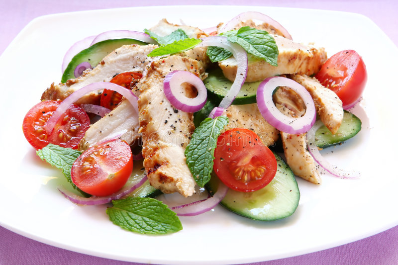 Chicken, Cucumber and Mint Salad stock photography