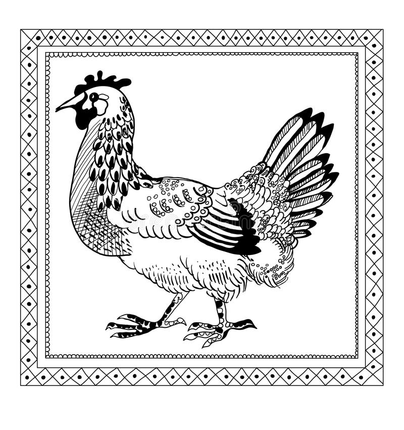 Download Chicken drawing scetch stock vector. Image of freehand - 23508860