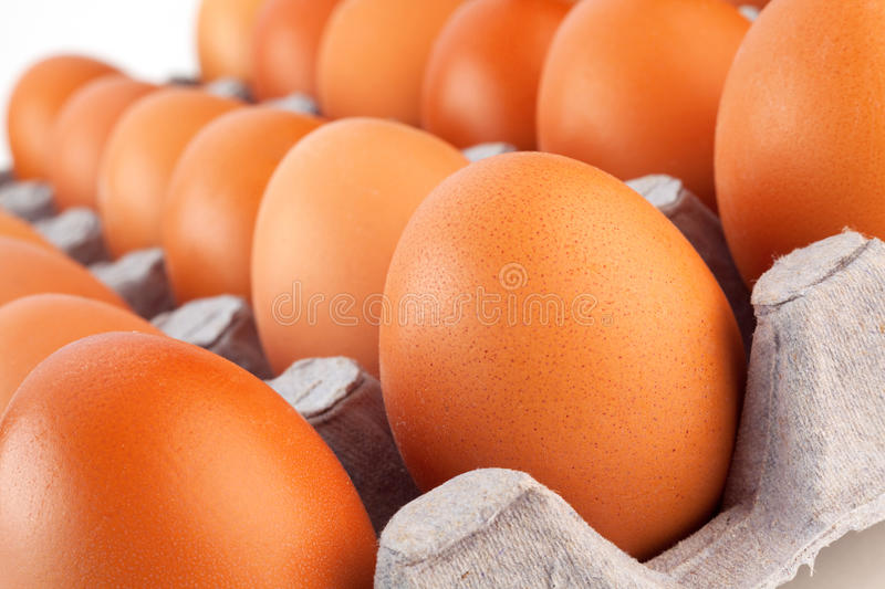 Download Chicken egg stock image. Image of hens, product, image - 26534625
