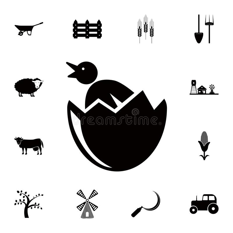 chicken from egg icon. Detailed set of farm icons. Premium quality graphic design icon. One of the collection icons for websites, royalty free illustration