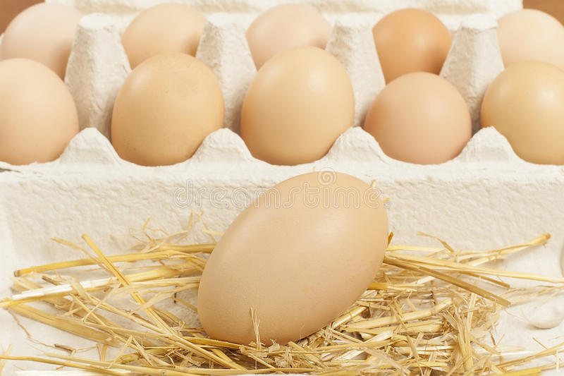 Download Chicken egg stock image. Image of closeup, brown, yellow - 30615173