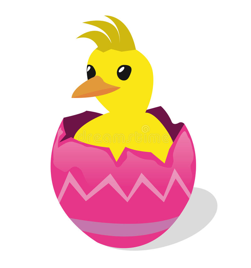 Chicken in egg shell royalty free stock photo
