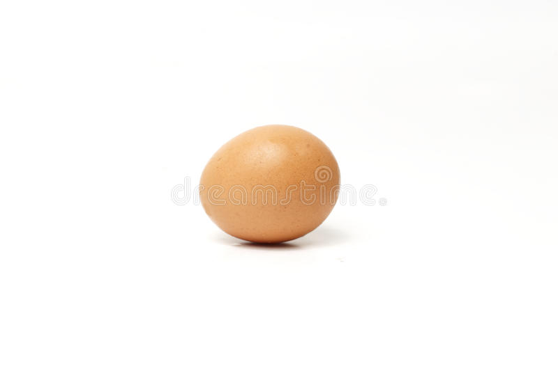 Chicken egg on white. Single brown chicken egg isolated on white stock photography