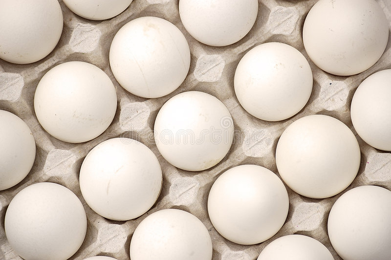Chicken eggs. royalty free stock images
