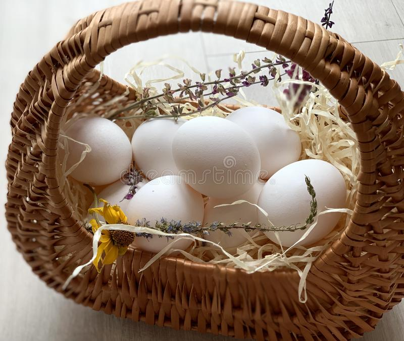 Chicken eggs in a basket. Beautiful white eggs. royalty free stock photography
