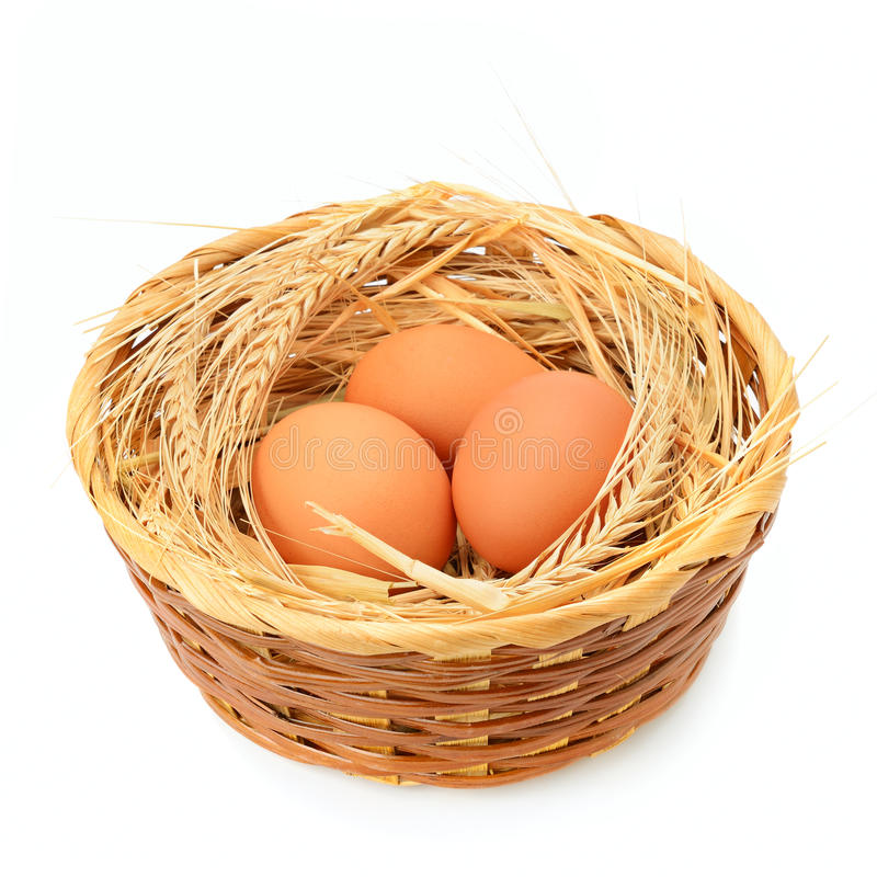 Chicken eggs in basket isolated on white. Background royalty free stock image