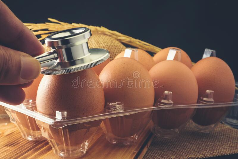Chicken eggs that are being examined by a medical stethoscope.  royalty free stock photos