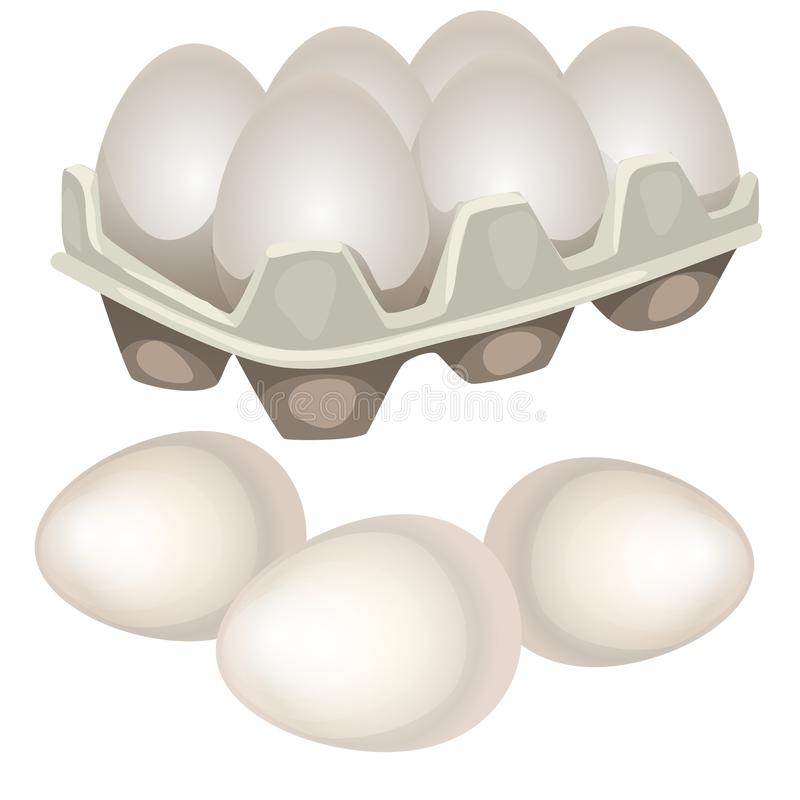 Chicken eggs in a cardboard box isolated on white background. Vector cartoon close-up illustration. vector illustration