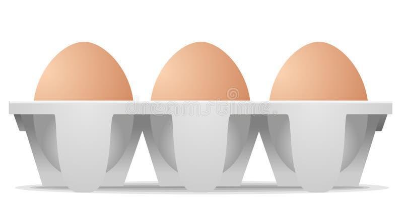 Chicken eggs in carton egg box stock illustration