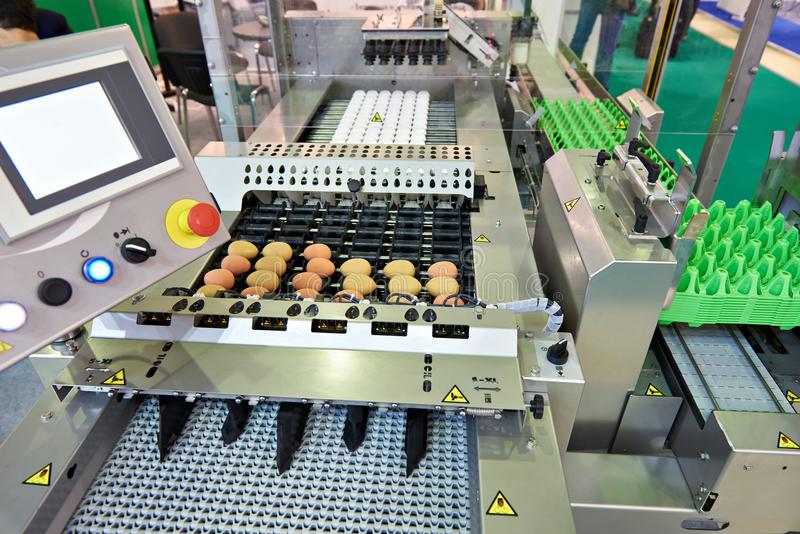 Download Chicken Eggs On Conveyor Belt At Food Factory Stock Photo - Image of organic, equipment: 102334912