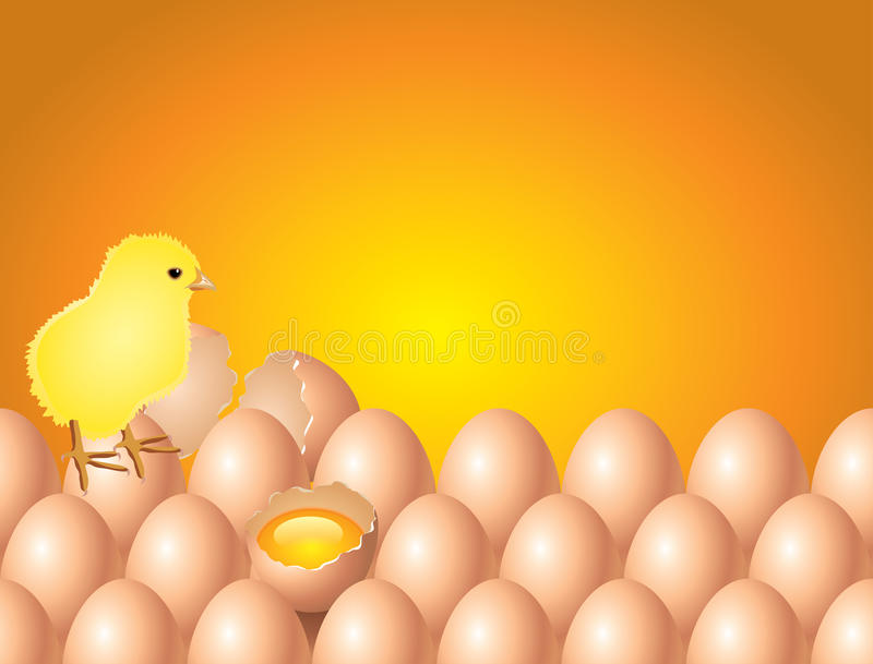 Download Chicken On Eggs Easter Background In Royalty Free Stock Images - Image: 34368159