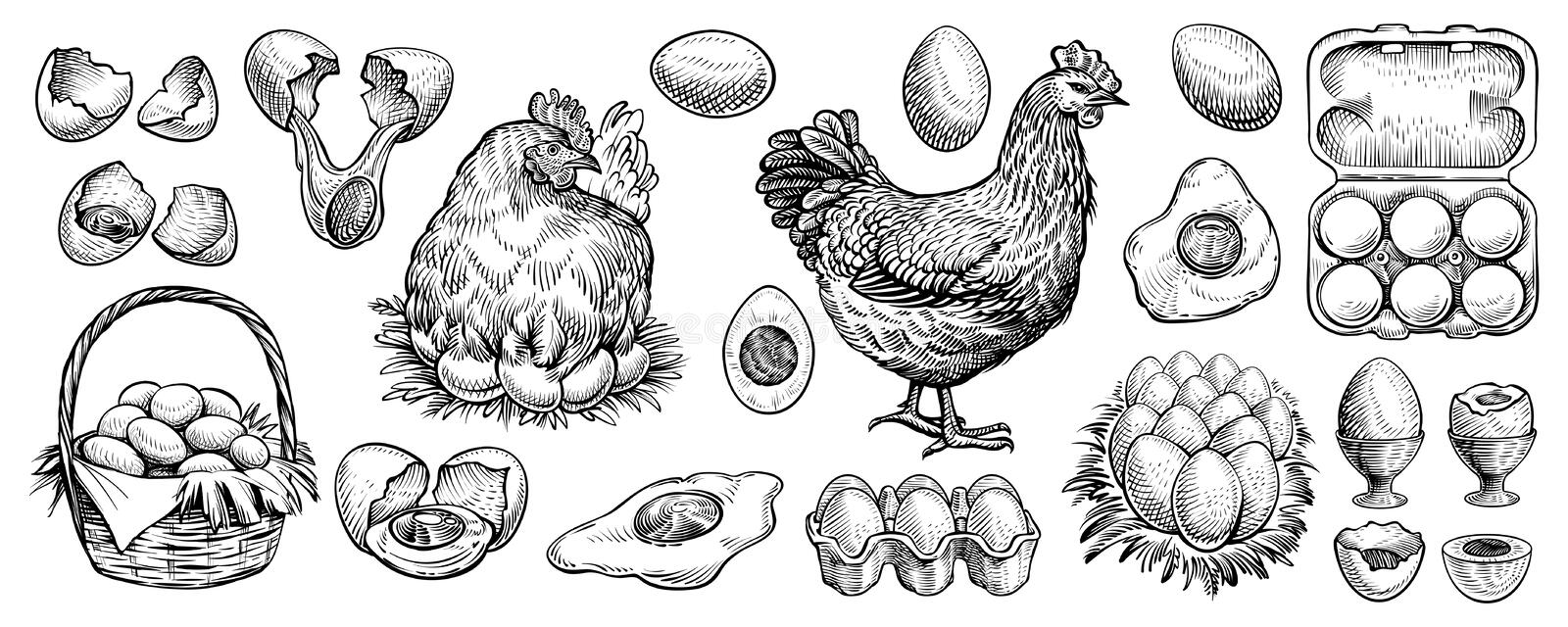 Hen Silhouette Png, Vector, PSD, and Clipart With Transparent Background  for Free Download | Pngtree