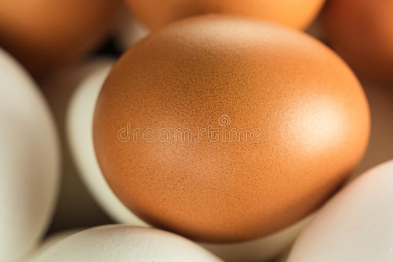 Chicken Eggs Macro. Chicken eggs white and yellow for Easter, macro royalty free stock photos