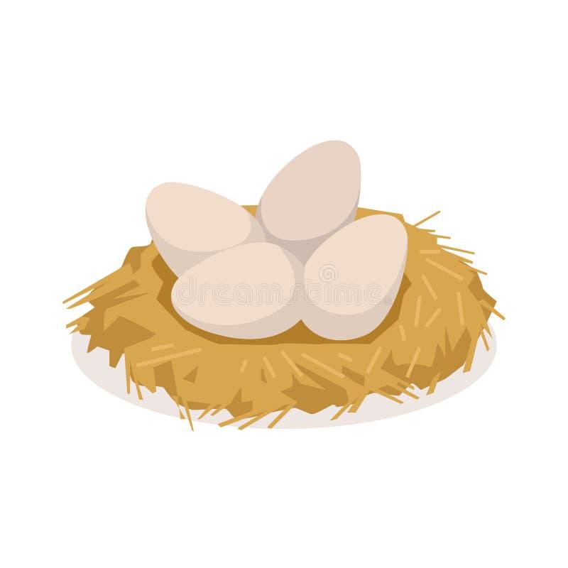 Chicken eggs in the nest, poultry breeding vector Illustration stock illustration