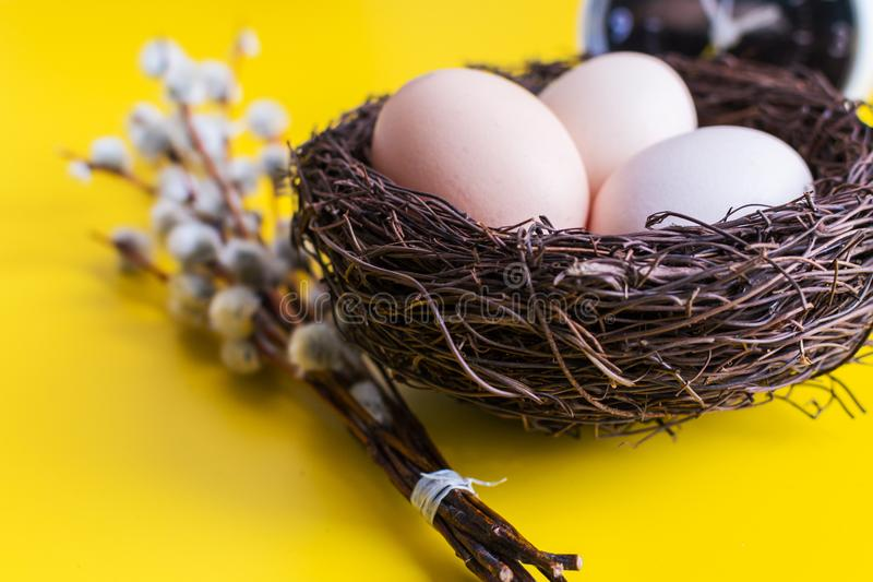Chicken eggs in a nest with a willow twig and an alarm clock on a yellow background stock images