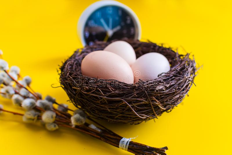 Chicken eggs in a nest with a willow twig and an alarm clock on a yellow background royalty free stock photography