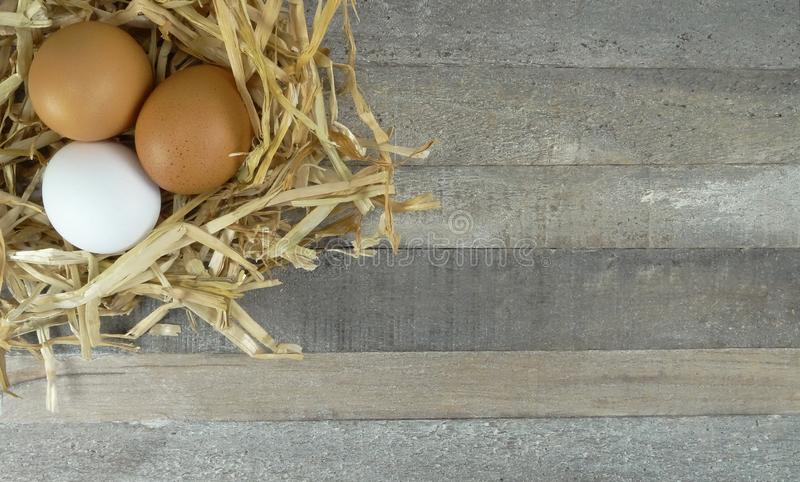 Chicken eggs in straw nest with burlap over wooden background stock photography
