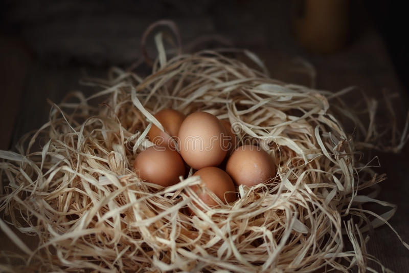 Chicken eggs in the straw nest on wooden boards. stock photography