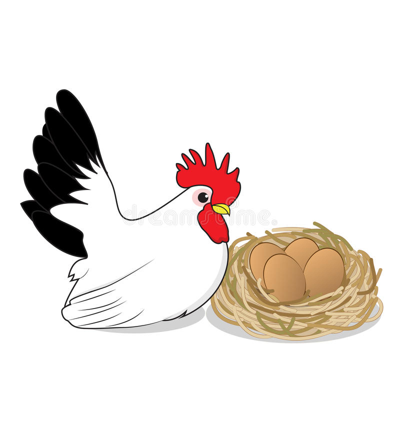 Chicken and eggs. On white background stock illustration