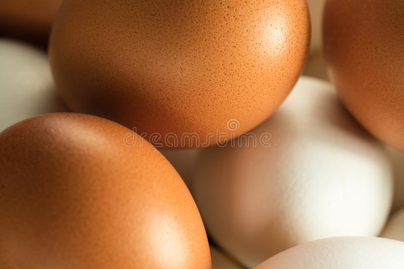 Chicken Eggs Macro. Chicken eggs white and yellow for Easter, macro stock photos