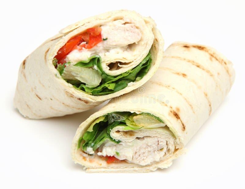 Chicken Fajita Wrap Sandwich Isolated royalty free stock photo