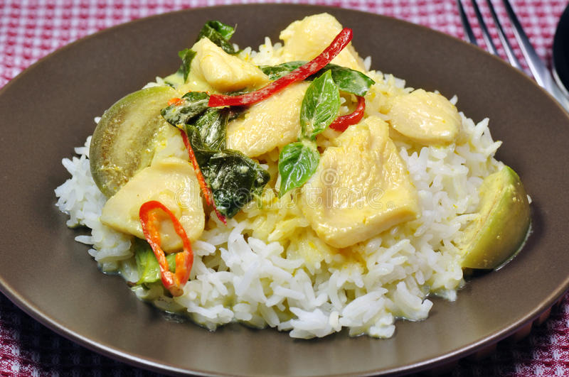 Download Chicken green curry stock image. Image of delicious, meal - 20573551