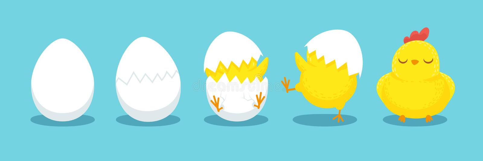 Chicken hatching. Cracked chick egg, hatch eggs and hatched easter chicks cartoon vector illustration. Chicken hatching. Cracked chick egg, hatch eggs and royalty free illustration