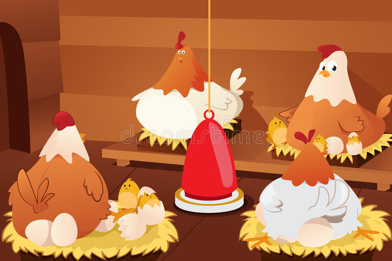 Chicken Hatching Eggs. A vector illustration of chicken hatching eggs in a barn stock illustration