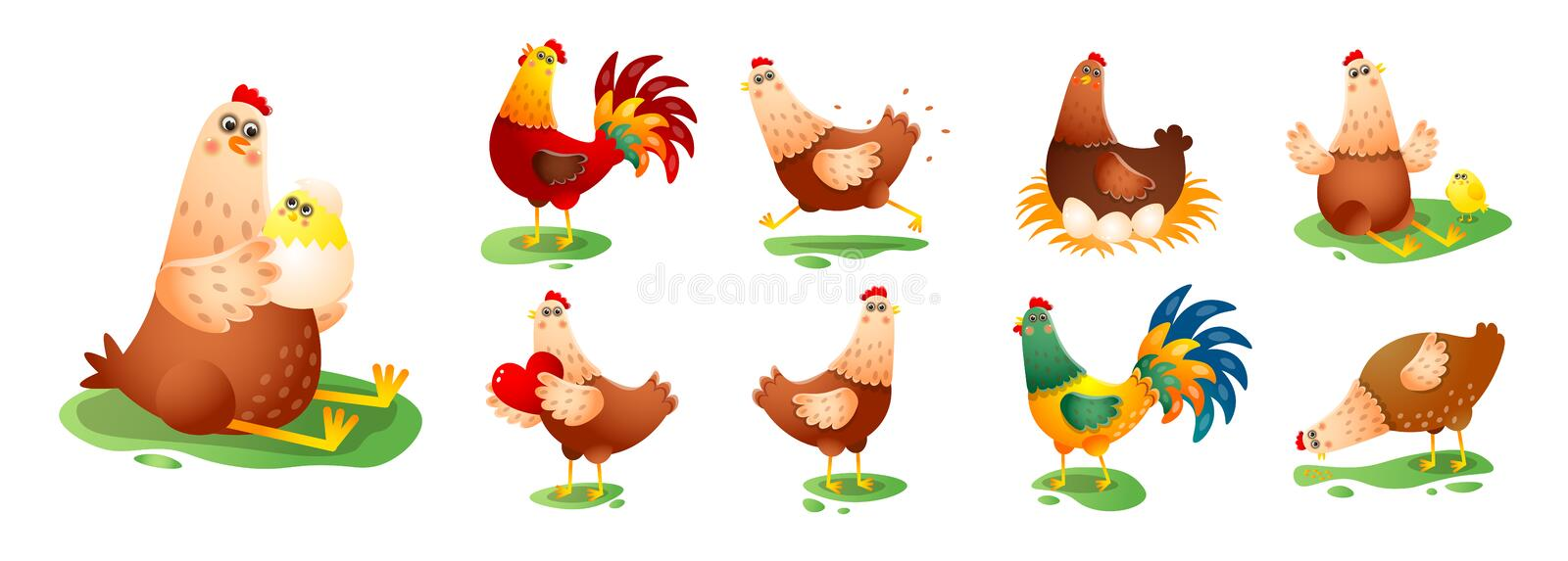 Chicken hen cock in different poses set isolated on white background vector illustration