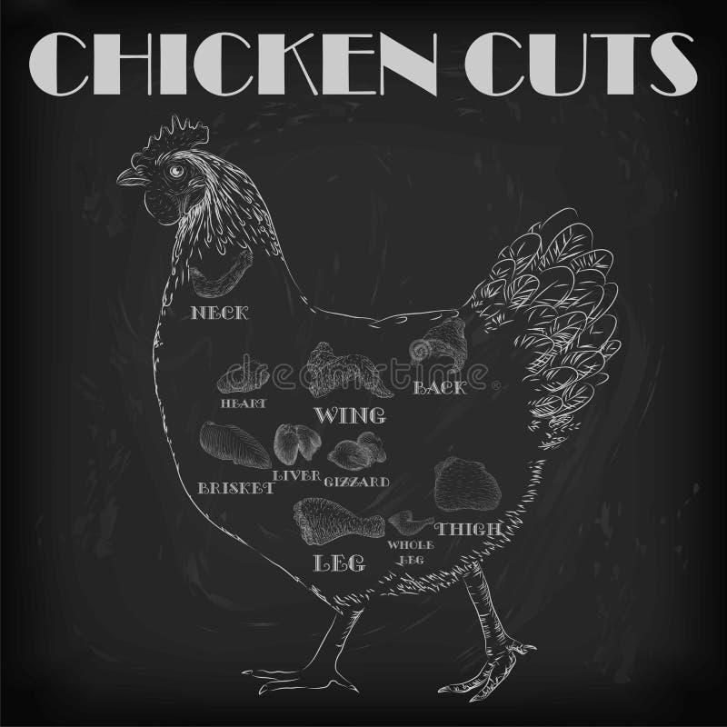 Chicken hen cutting meat scheme parts carcass brisket neck wing vector illustration