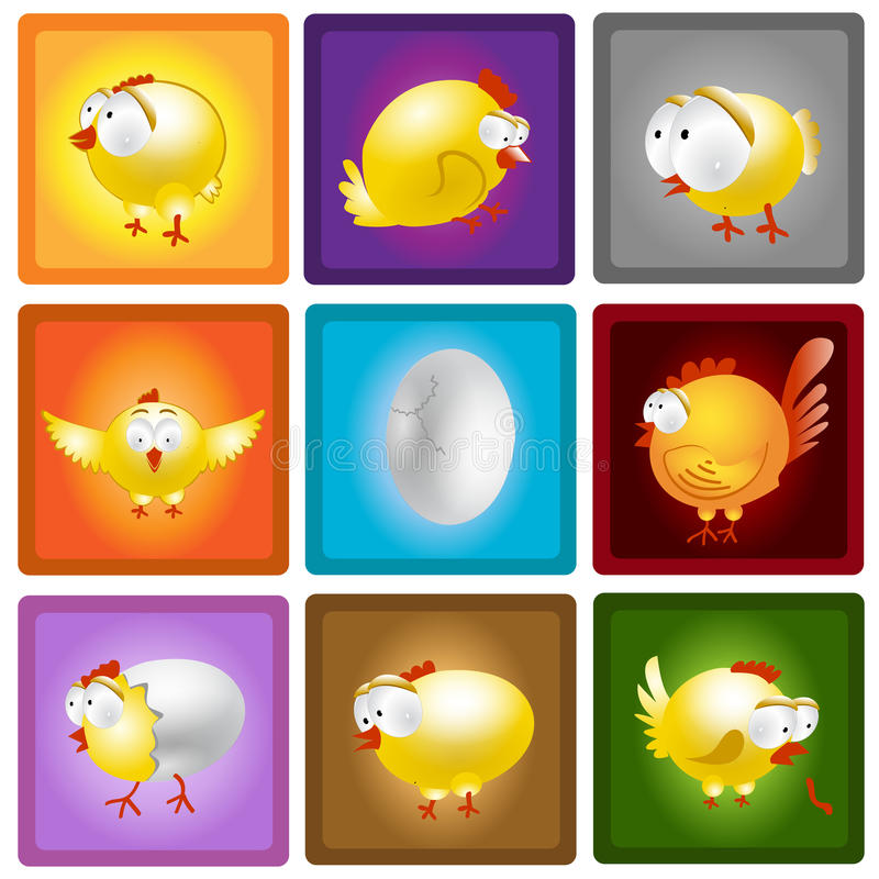 Chicken hen egg set collection vector illustration