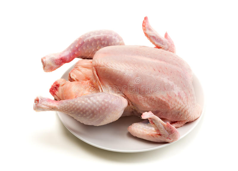 Chicken isolate on white. Carcass of broiler chicken on a plate (not cooked). Isolate on white background stock photo