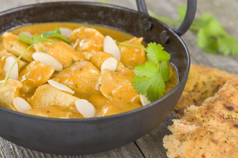 Download Chicken Korma stock photo. Image of cream, background - 35624242