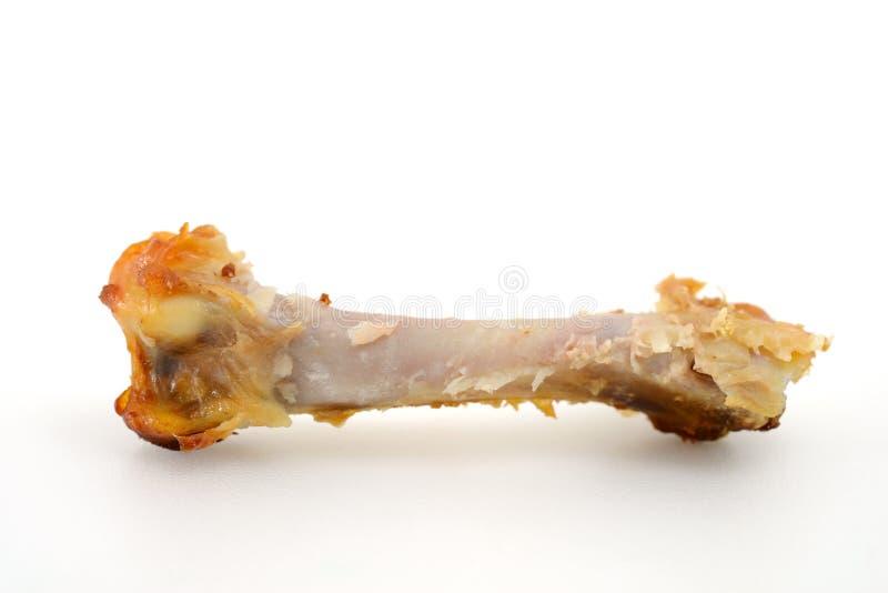 Chicken Leg Bone stock photos