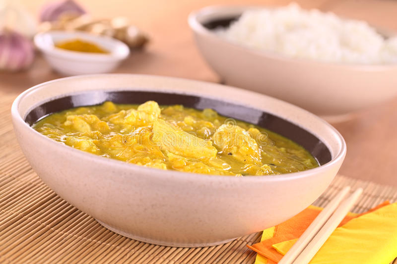 Download Chicken-Mango Curry Stock Image - Image: 24175791