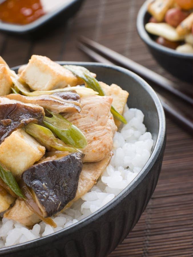 Chicken and Mushroom Donburi with Fried Tofu. Bowl of Chicken and Mushroom Donburi with Fried Tofu stock image