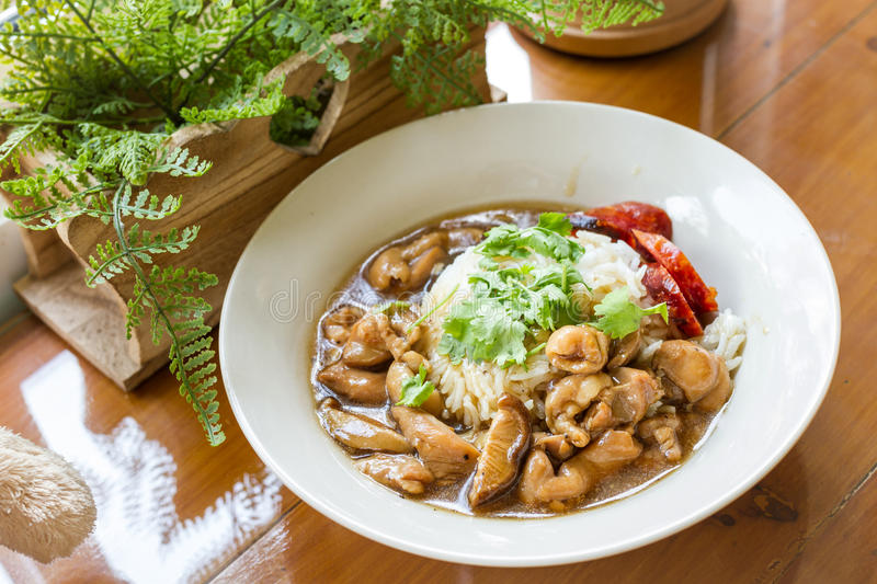 Chicken and mushroom sauce over rice stock image