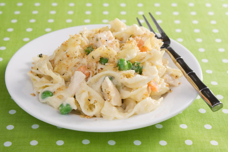 Download Chicken Noodle Casserole stock photo. Image of casserole - 18279416