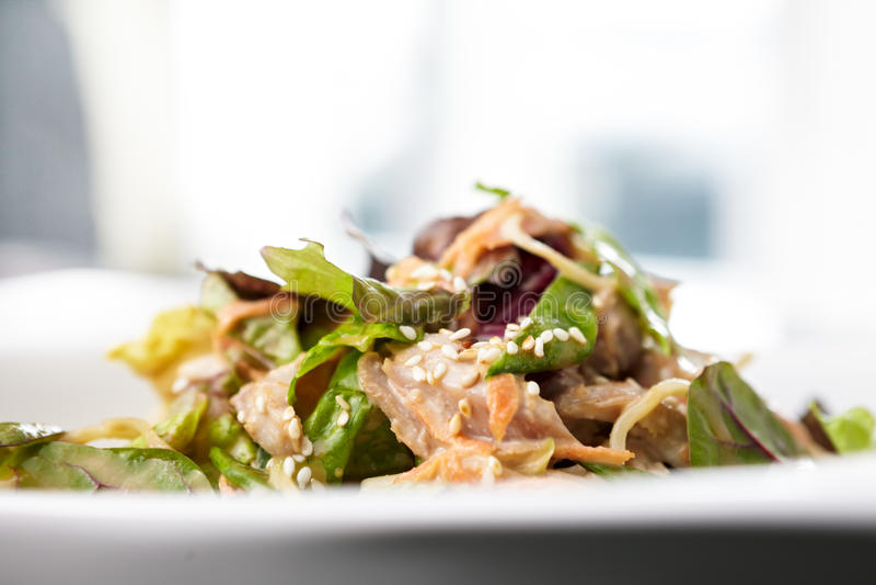 Download Chicken salad stock photo. Image of pasta, light, chicken - 29769378