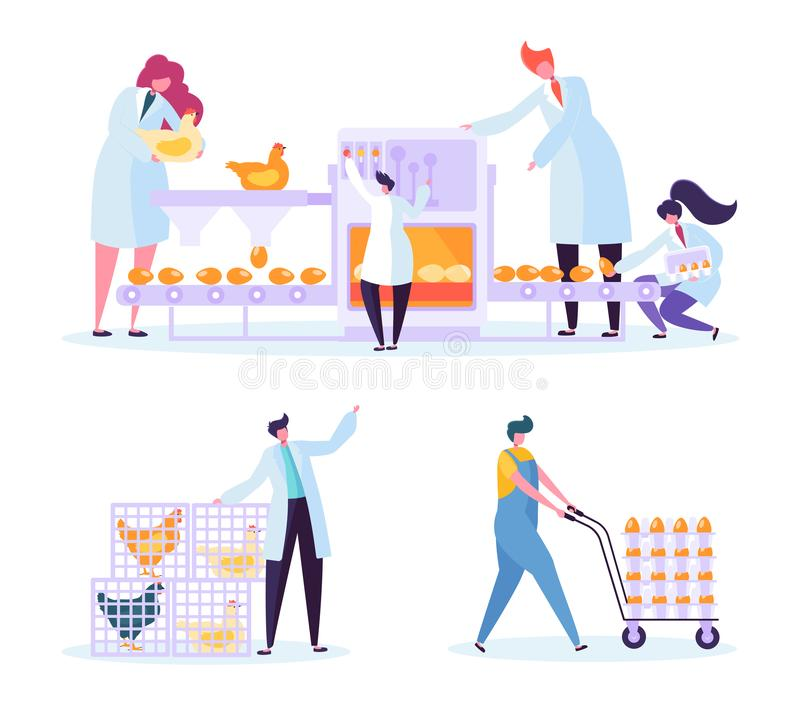 Chicken Poultry Egg Production Farm Line Set. Worker Character Processing Machinery Packing at Manufacture Line vector illustration