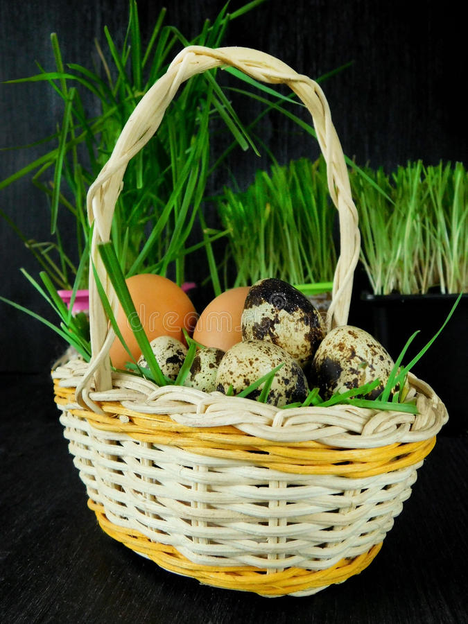 Chicken and quail eggs in a basket royalty free stock photography