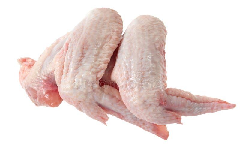 chicken raw wings royaltyfria bilder