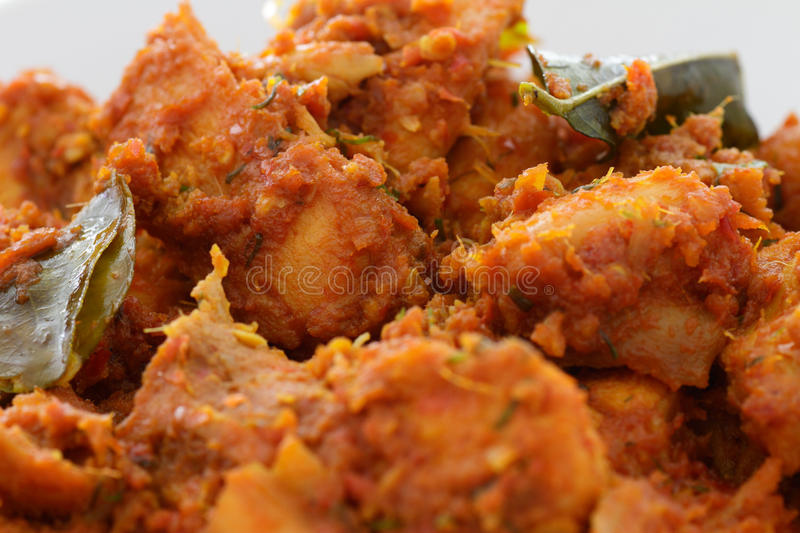 Chicken Rendang. Close-up of a dish of spicy Rendang chicken royalty free stock image