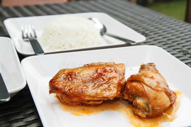 Chicken and Rice royalty free stock photos