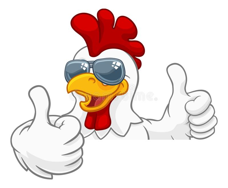 Chicken Rooster Cockerel Bird Sunglasses Cartoon. A chicken rooster cockerel bird cartoon character in cool shades or sunglasses peeking over a sign and giving a royalty free illustration