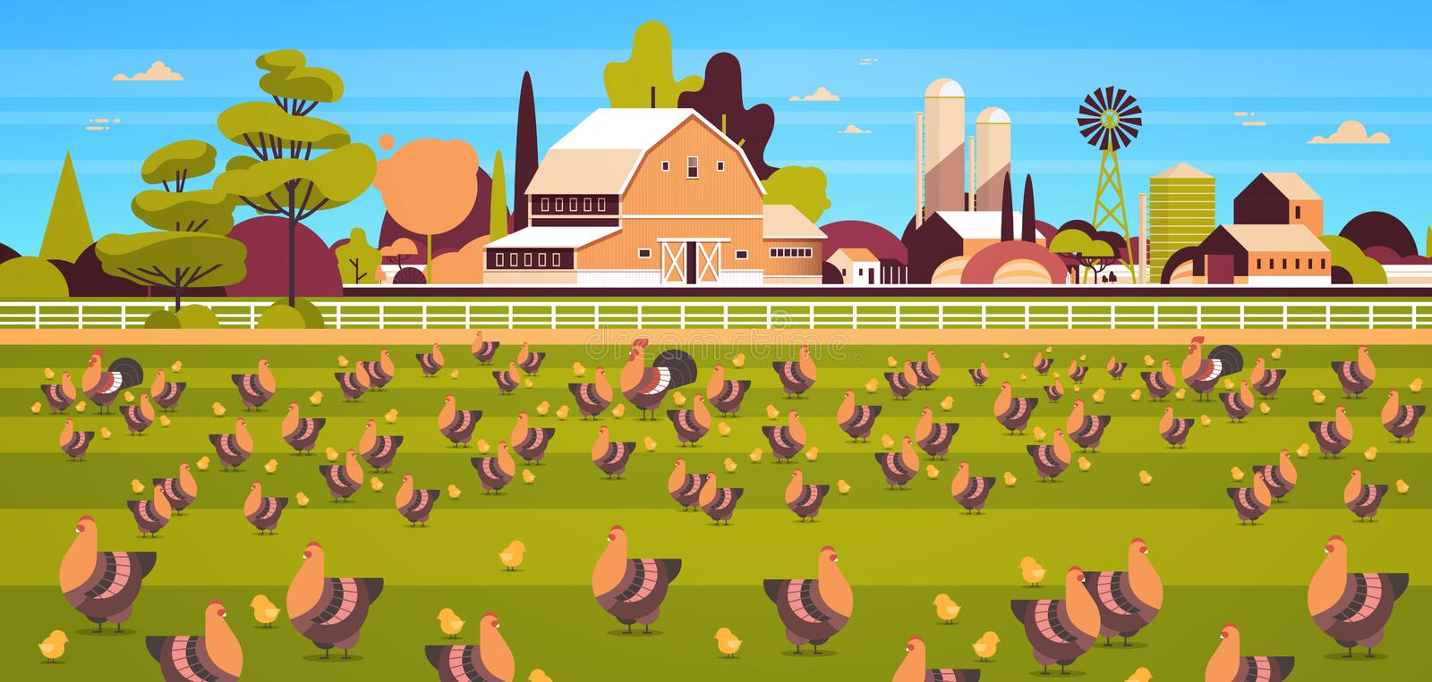 Chicken and rooster free range feeding time farming breeding hed for food poultry farm concept field farmland stock illustration