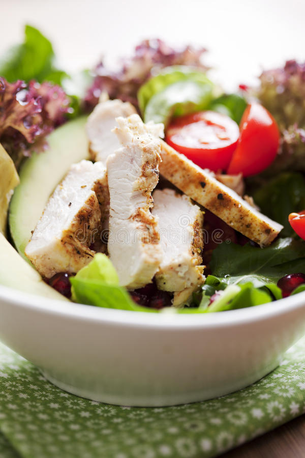 Free Chicken Salad Stock Photo - 23267390