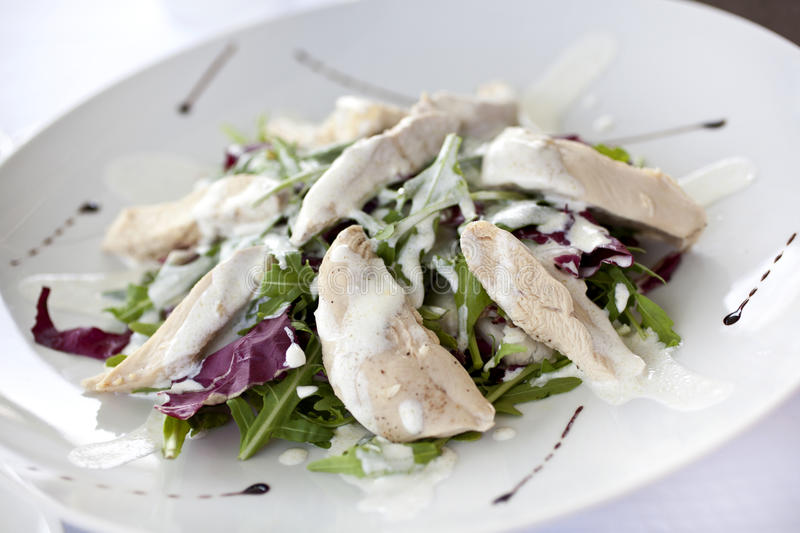 Download Chicken Salad Stock Image - Image: 25386061