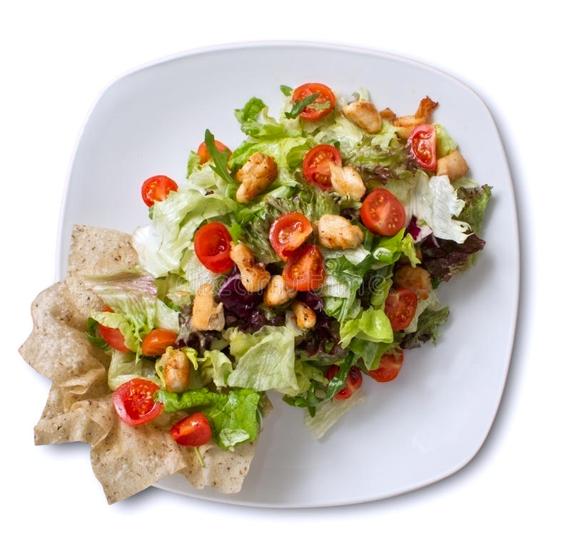 Chicken Salad Overhead royalty free stock photography