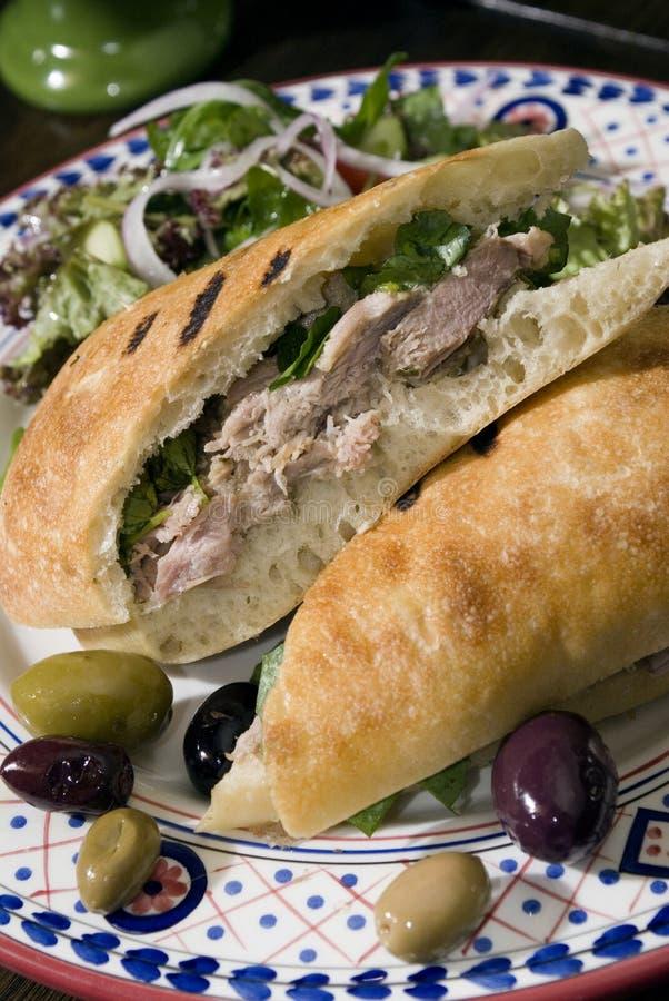 Free Chicken Salad Sandwich 2 Stock Images - 5560174